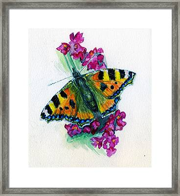 Spreading Wings Of Colour Framed Print