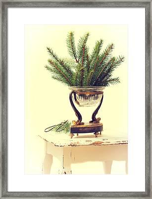 Sprigs Of Pine Framed Print