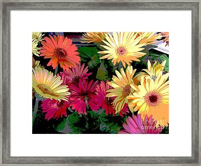 Spring 13 Framed Print by Shirley Sparks