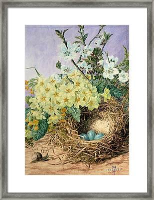 Spring, 1879 Framed Print by Fanny Jane Bayfield