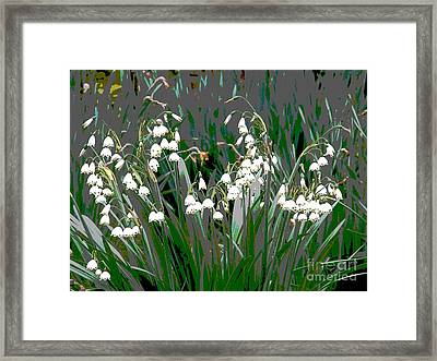 Spring 3 Framed Print by Shirley Sparks