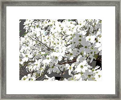 Spring 8 Framed Print by Shirley Sparks