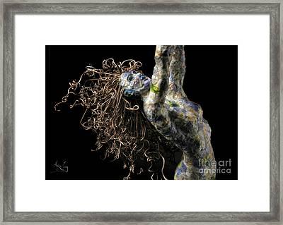 Spring Framed Print by Adam Long