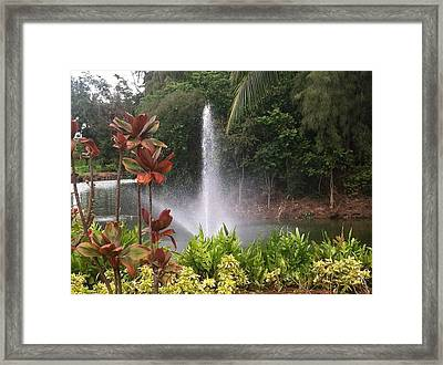 Framed Print featuring the photograph Spring by Alohi Fujimoto