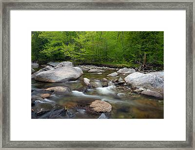 Spring Along The North Fork Framed Print