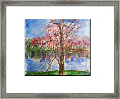 Spring Framed Print by Angela Puglisi