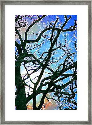 Spring Approaches Framed Print by First Star Art