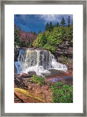 Spring At Blackwater Falls Framed Print