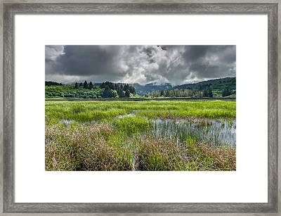 Spring At Dry Lagoon 1 Framed Print by Greg Nyquist