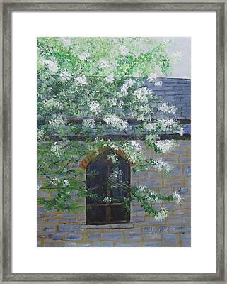 Spring At Grace Church Framed Print
