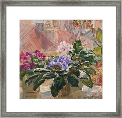 Spring At My Window Framed Print by Victoria Kharchenko