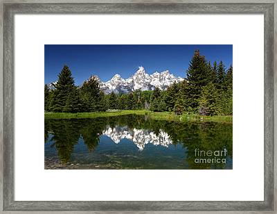 Spring At Schwabacher's Framed Print
