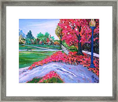 Spring At The Common Framed Print
