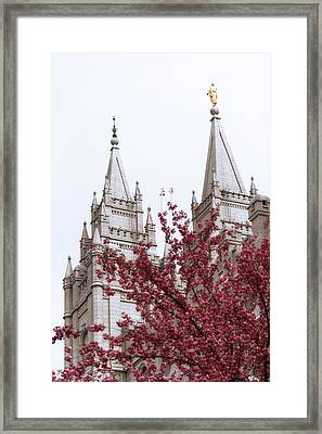 Spring At The Temple Framed Print by Chad Dutson