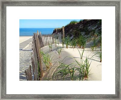 Spring Beach Framed Print by Dianne Cowen