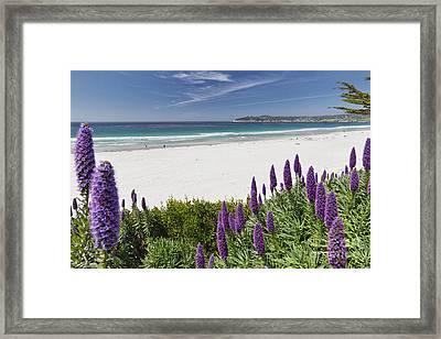 Spring Beach Vista Of Carmel Beach Framed Print