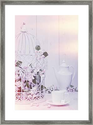 Spring Birdcage Framed Print