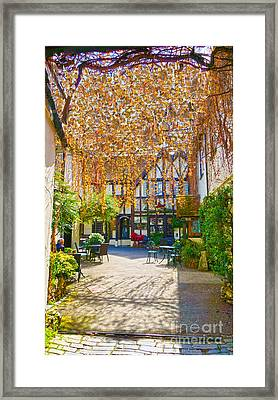 Spring Blooming Framed Print by Andrew Middleton