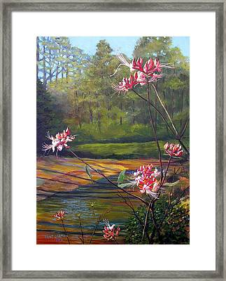 Spring Blooms On The Natchez Trace Framed Print