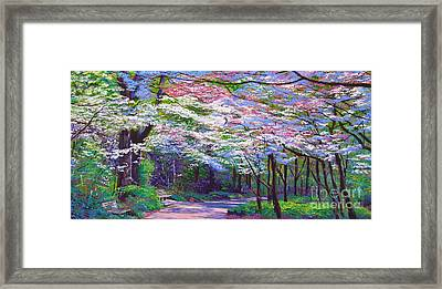Spring Blossom Pathway Framed Print by David Lloyd Glover