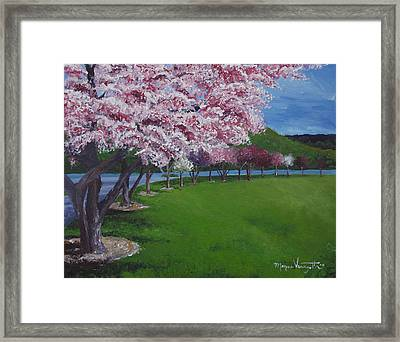 Spring Blossoms Framed Print by Monica Veraguth