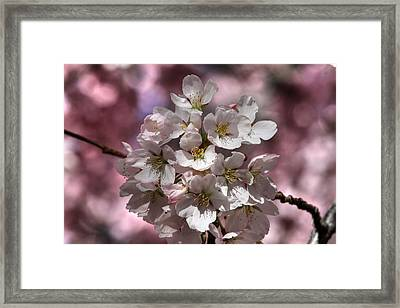 Spring Bouqet Framed Print by Donna Kennedy