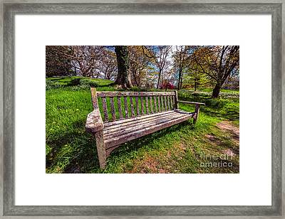 Spring Break Framed Print by Adrian Evans