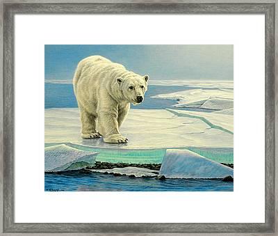 Spring Break Framed Print by Paul Krapf