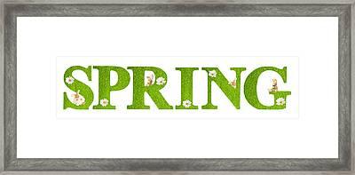 Spring Bunnies Framed Print by Amanda Elwell