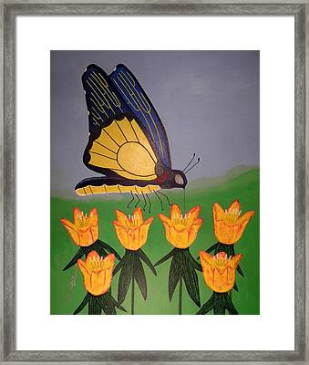Spring Butterfly Framed Print by Robert Provencial