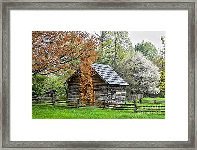 Spring Cabin I - Blue Ridge Parkway Framed Print by Dan Carmichael