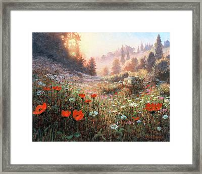 Spring Carpet Mt Carmel Framed Print by Graham Braddock