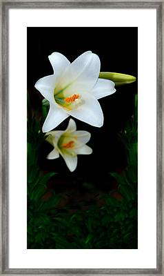 Spring Framed Print by Cecil Fuselier