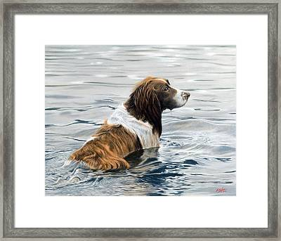 Spring Cleaning Framed Print by John Silver
