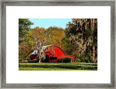 Spring Clover Framed Print by Leslie Kirk