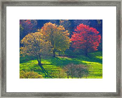 Spring Color Just Down The Road Framed Print by Alan Olansky