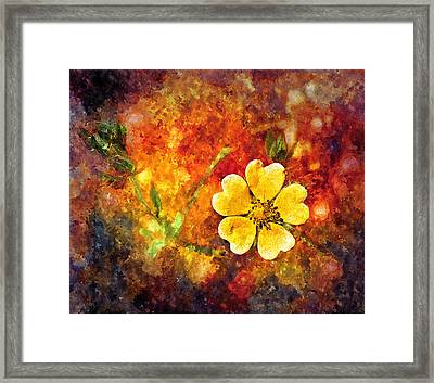 Spring Color Framed Print