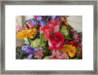 Spring Colors Framed Print by Joan Bertucci