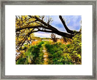 Spring Colours  By Leif Sohlman Framed Print