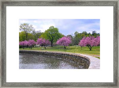 Spring Cove Framed Print by Diana Angstadt
