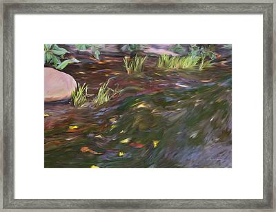 Spring Creek In Oak Canyon Park Framed Print by Angela A Stanton