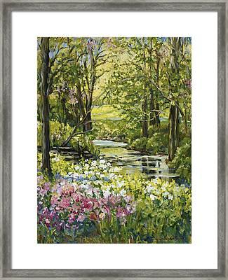 Spring Creek Rockford Il Framed Print