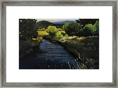 Spring Creek Framed Print by Suzanne Tynes