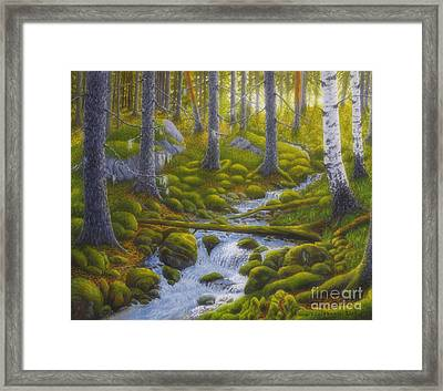 Spring Creek Framed Print by Veikko Suikkanen
