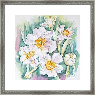 Spring Daffodils Framed Print by Inese Poga