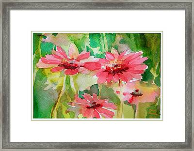 Spring Daisies In The Pink Framed Print by Mindy Newman
