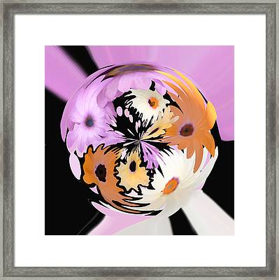 Spring Daisies Series 111 Framed Print