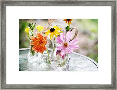 Spring Delights Framed Print by Bonnie Bruno