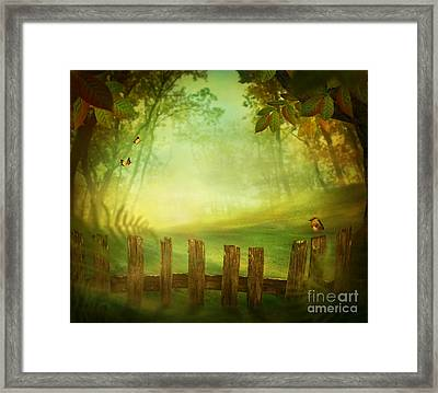 Spring Design - Forest With Wood Fence Framed Print