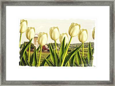 Spring Down On The Farm Framed Print by Edward Fielding